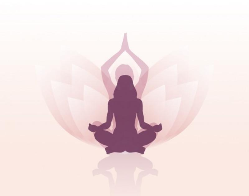 diferentes escolas de yoga