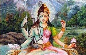 shiva shakti sobre o poder do yoga